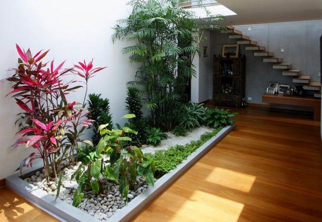 Tips-Membuat-Taman-Minimalis-di-Belakang-dan-di-Dalam-Rumah-3