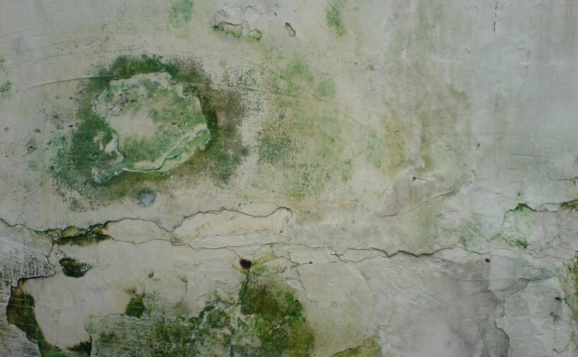 Dinding Yang Terkelupas (Sumber Gambar : www.rumahdekorasi.com)